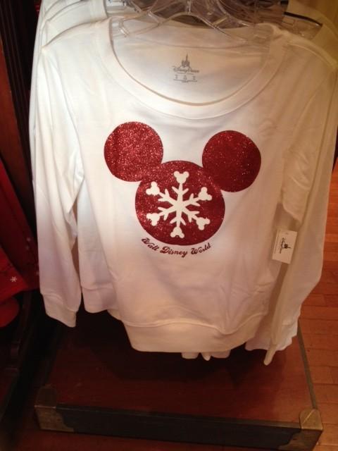 Disney World Christmas 2013